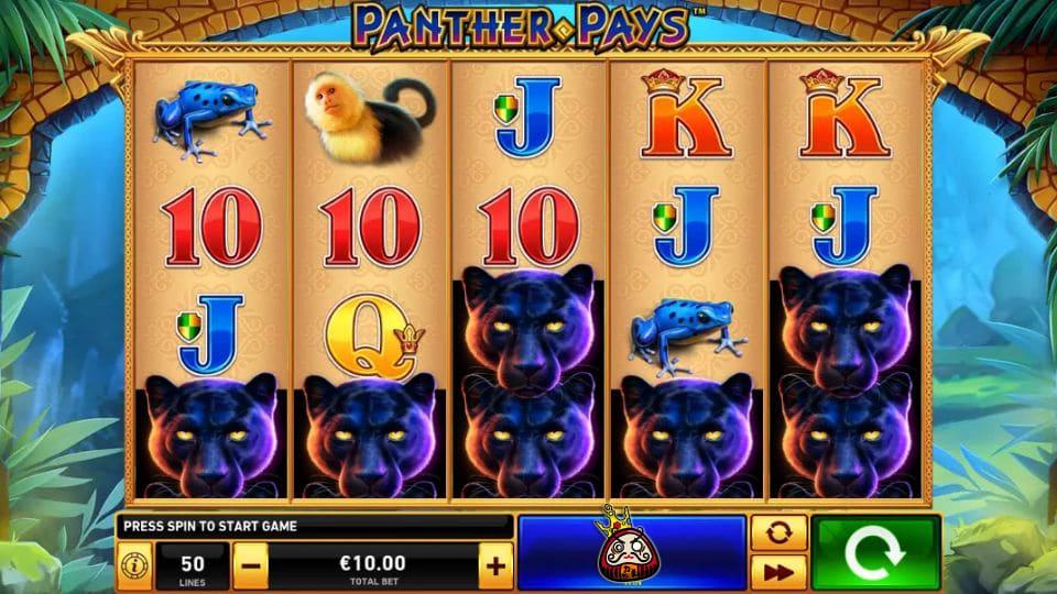 Panther Pays スクリーンショット